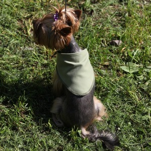 Фотография товара Косынка охлаждающая для собак Osso Fashion S