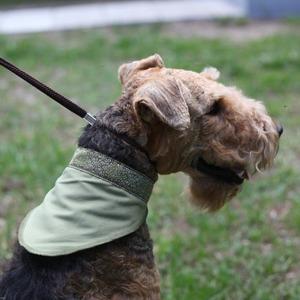 Фотография товара Косынка охлаждающая для собак Osso Fashion M