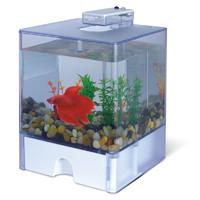 Фотография товара Аквариум для рыб AA-Aquarium  Aqua Box Betta
