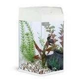 Фотография товара Аквариум для рыб AA-Aquarium Hexagon