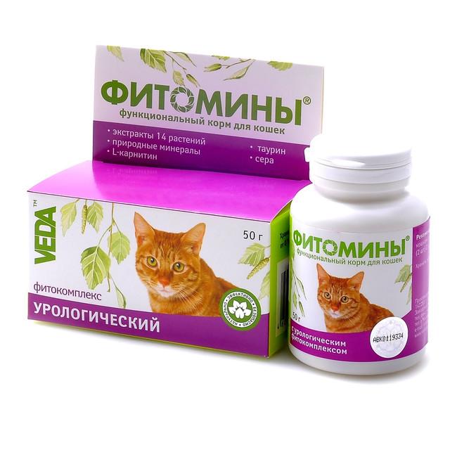 аттракцион для какие для котят хорошие витамины такой