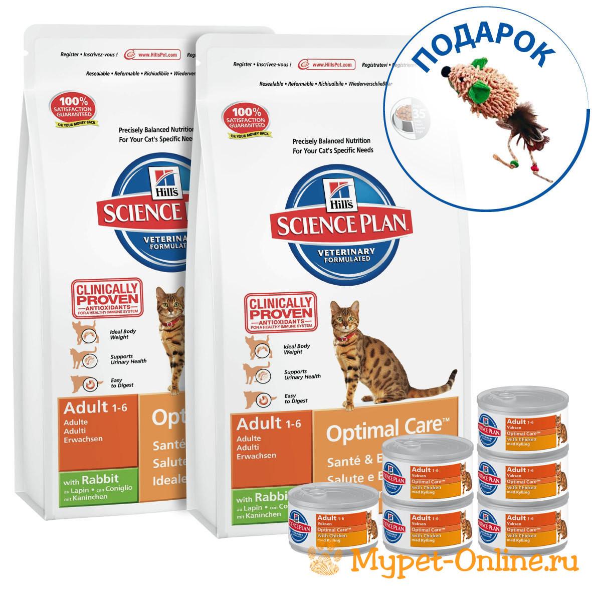 Аллергия на корм у кошек причины проявления лечение