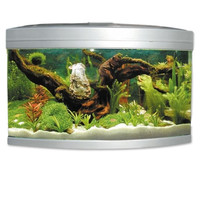 Фотография товара Аквариум для рыб Jebo 470R, размер 65х65х70см., серебро