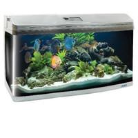 Фотография товара Аквариум для рыб Jebo 3100R, размер 100х48х62см., серебро
