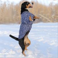 Фотография товара Жилет для собак Osso Fashion, размер 65