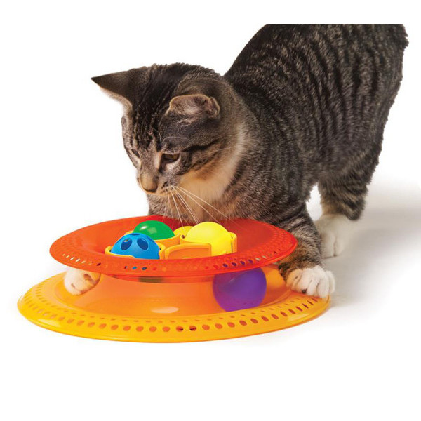 Different types of cat toys