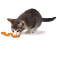 Фотография товара Игрушка для кошек Petstages Orka Wggle Worm, размер 11см.