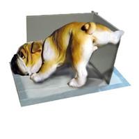 Фотография товара Уголок для кобелей Стандарт Bourbon-Brut, размер 40х30х30см., цвета в ассортименте