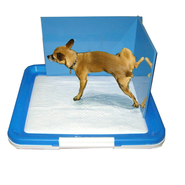 Столбик для собаки своими руками