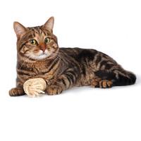 Фотография товара Игрушка для кошек Triol