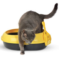 Фотография товара Туалет для кошек Triol Р541А, размер 51x37x17см., цвета в ассортименте