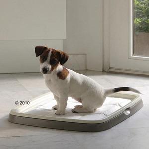 Фотография товара Туалет для собак Savic L, размер 60х48х4см., бежевый